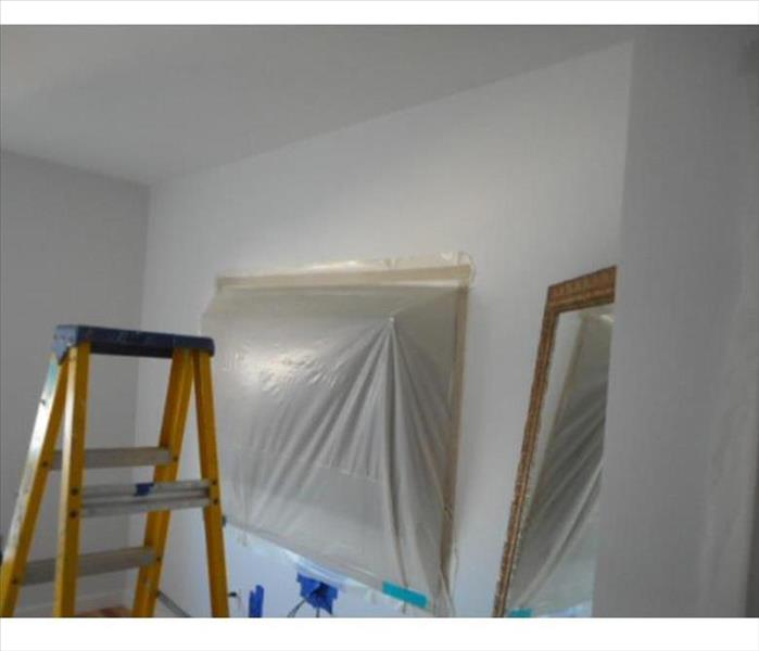 Mold Remediation The Truth About DIY Mold Removal In Your Metairie Home