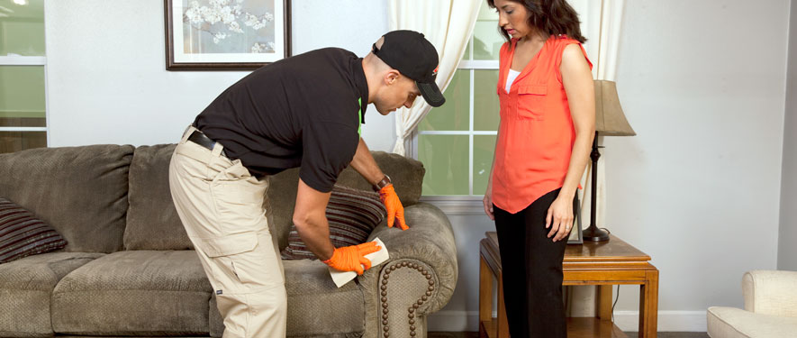 Metairie, LA carpet upholstery cleaning