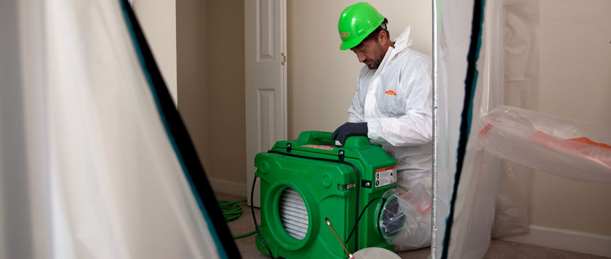 Metairie, LA mold cleanup