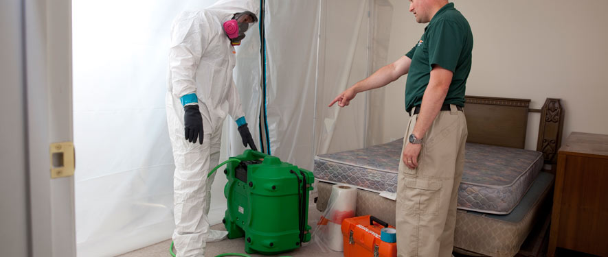 Metairie, LA mold removal process
